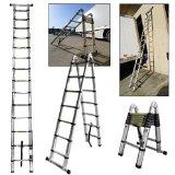 ladders2